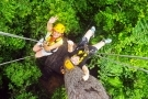 Zipline and Aerial Adventure