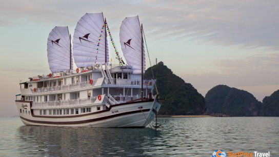 Signature Royal Cruise - No 19 Halong Bay Family Cruises