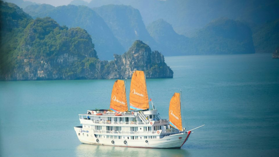 Aphrodite Cruise - No 17 Halong Bay Family Cruises