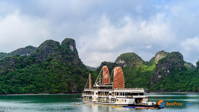 Azalea Cruise Overview