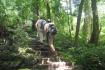 Trekking at Cat Ba National Park
