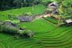 Than Thuoc Village