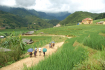 On the way to Lao Chai