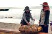 Fisherwomen Packing Crab