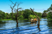 Local Women Navigate Through The Mangroves In Kampong Phluk Village