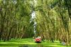 Tra Su Forest In Chau Doc