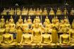 Golden Buddha 3