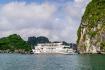 Signature Cruise Halog 3