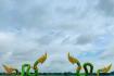 Shutterstock 1427607236 A0fjcy