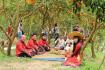 Don Ca Tai Tu Folk Music