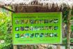 Information Board Of Butterfly