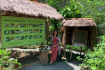 Nice Pic At Kep Butterfly Farm