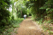 The Trail Around Kep National Park