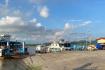 Got Pier (5)