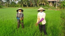 Huu Dinh Village