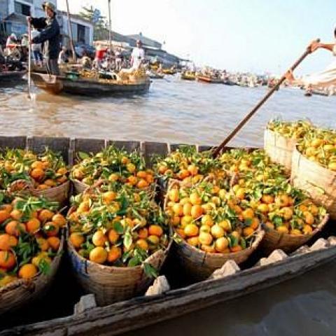 Tra On Floating Market