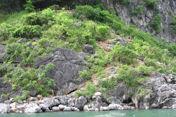 Thien Canh Son Mountain