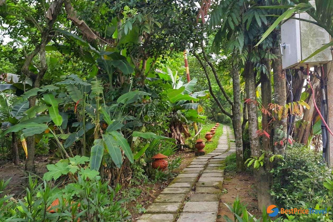 Garden in Thuy Bieu Village