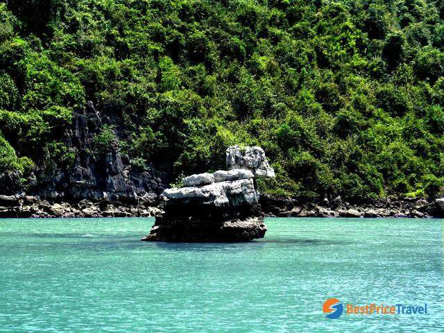 Duck Islet