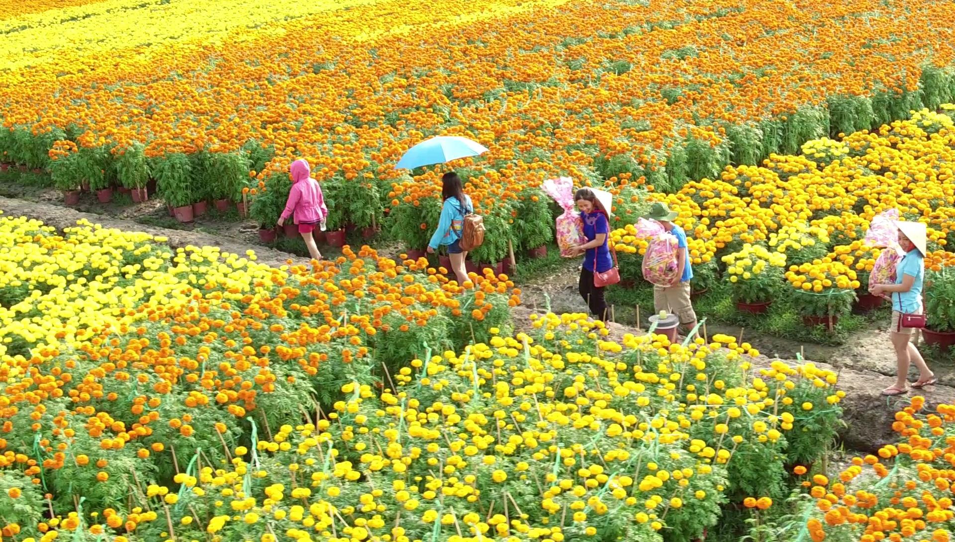 Sa Dec Flower Village