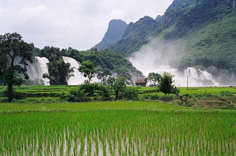 Ban Gioc Waterfall In Rainy Season