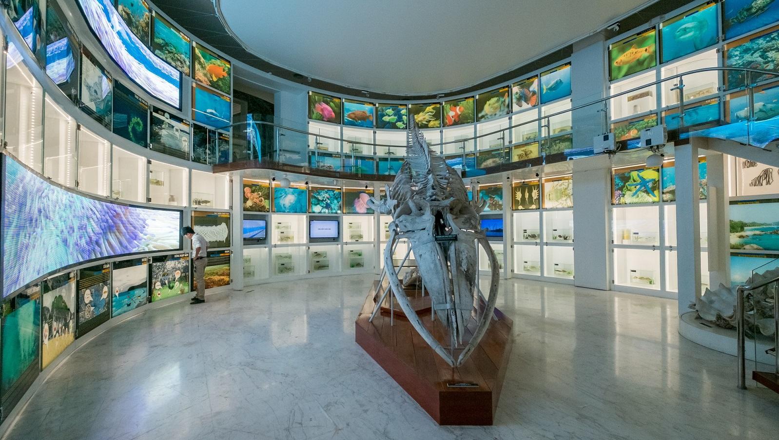 First Floor display in Quang Ninh Museum