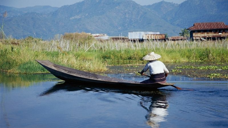 A floating garden in Inle Lake