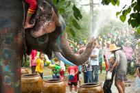 Get Ready for Songkran Festival