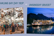 Halong Bay Day Trip or Overnight Cruise: Complete Guide to Choose the Right One