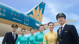 Overview of Main Airlines in Vietnam