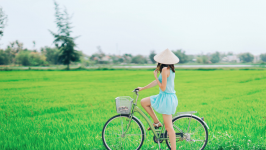 A Green Travel Guide to Eco-friendly Vacations in Vietnam