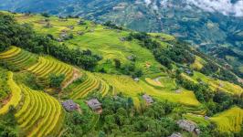 5 Best Ways to See Rice Paddies in Vietnam