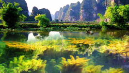 How to Travel from Halong to Ninh Binh?