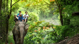 Experience of the Best 6-day Sightseeing in Thailand