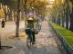 Wandering the Romantic Streets of Hanoi