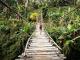 Top 5 Outdoor Activities for Adventurers in Chiang Mai