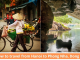 Hanoi to Phong Nha Dong Hoi: Complete Guide 2021