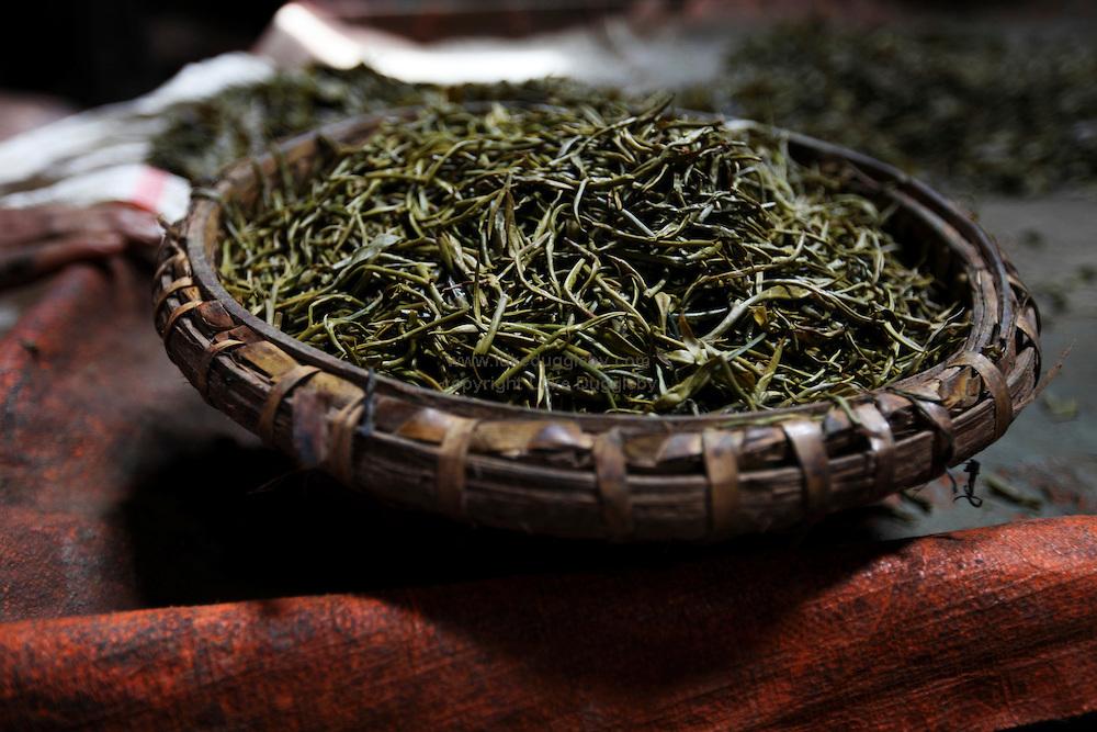 "Pickled tea - Ingredient for the Burmese Tea Leaf Salad ""Laphet"""