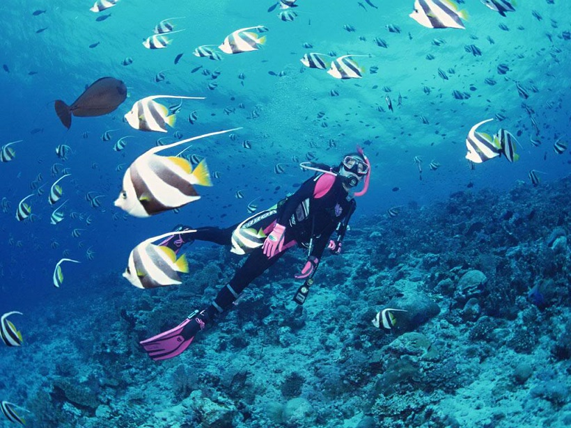 Snorkeling to discover the underwater of Nha Trang