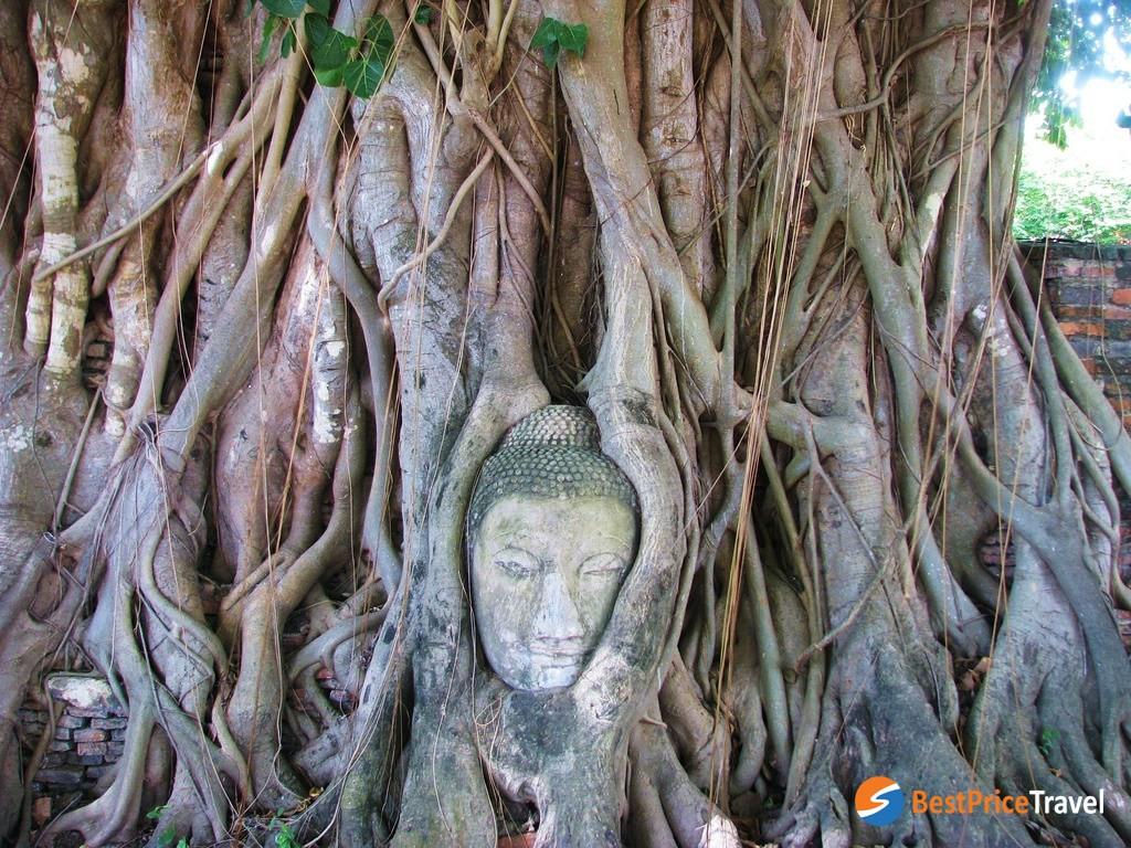 the world-heritage Ayutthaya Historic City