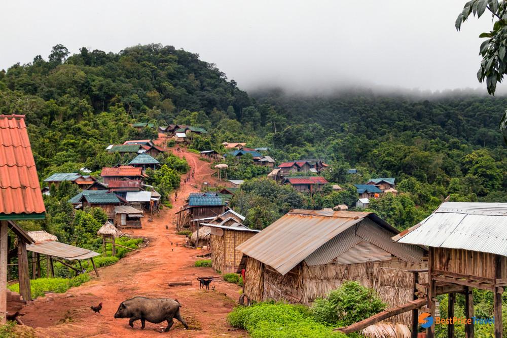 Laos in dry season
