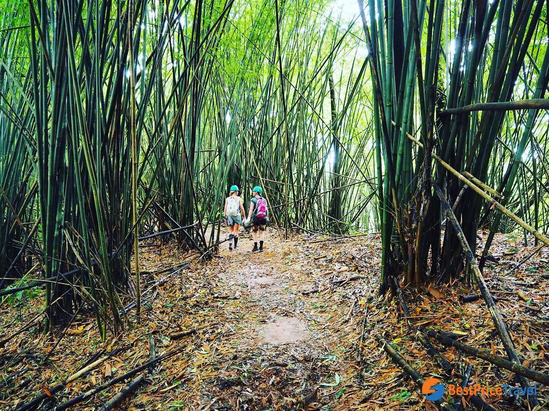 Trekking through Bekeo Nature Reserve