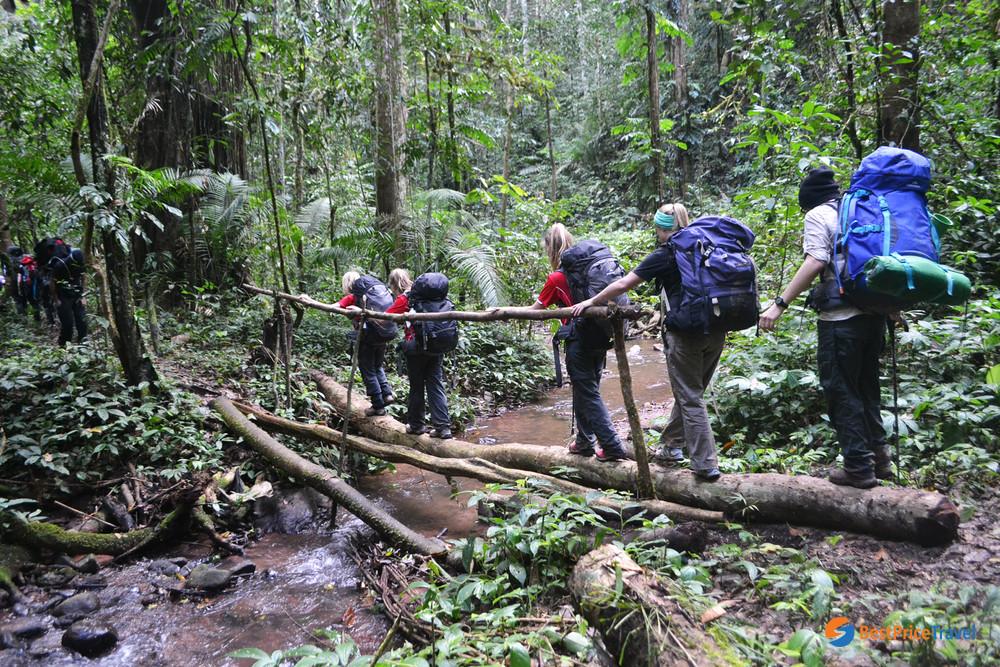 Trekking through Nam Ha National Protected Area