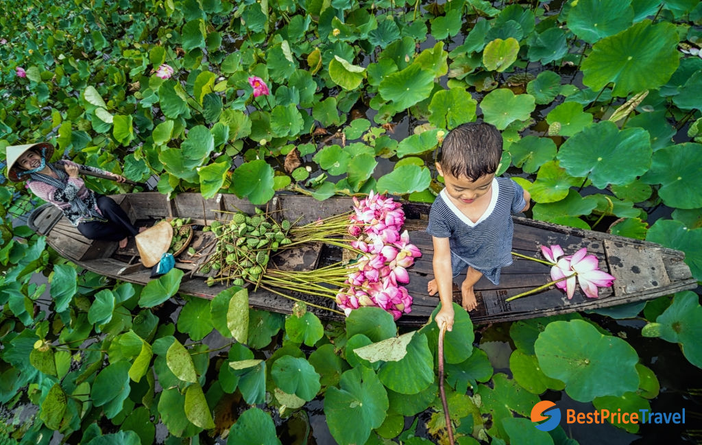 Vietnam Photography with lotus