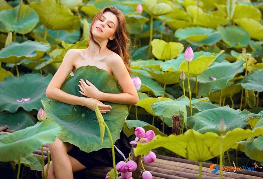 Lotus lake - Vietnam Photography