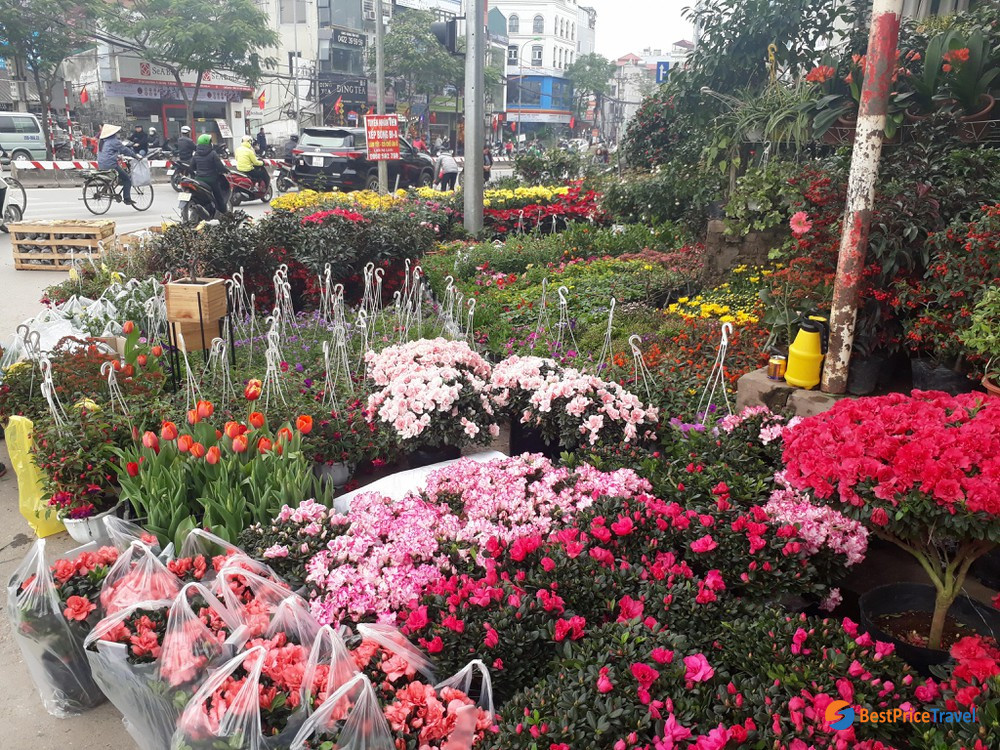 a corner of flower market in tet holiday