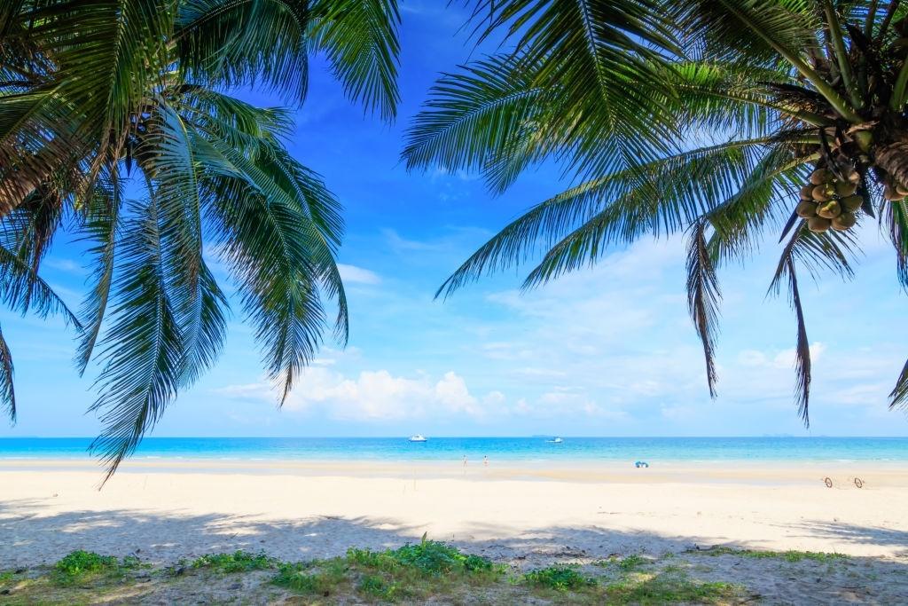 Koh Tao Island - Top 5 Best Islands in Thailand