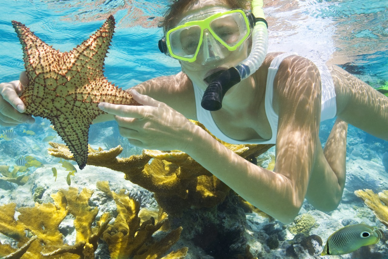 snorkel in Halong Bay budget tour