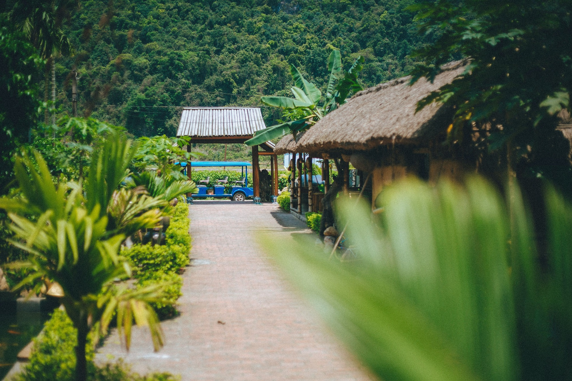 Viet Hai village - Things to do in Cat Ba
