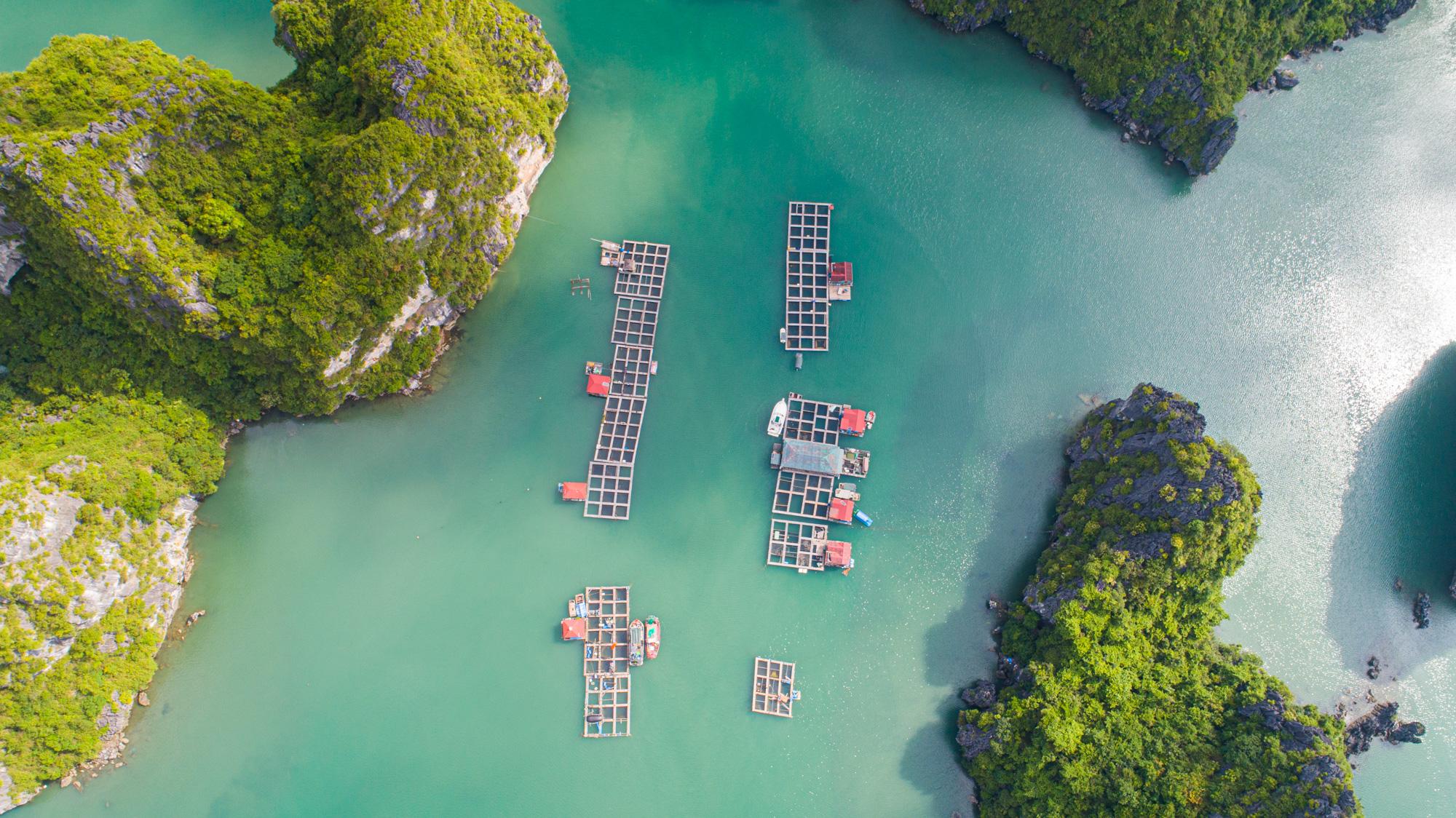 Lan Ha Bay - new trendy for Halong Bay tourism